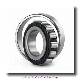 200 mm x 310 mm x 51 mm  SKF NU 1040 ML  Cylindrical Roller Bearings