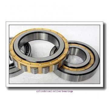 1.969 Inch | 50 Millimeter x 4.331 Inch | 110 Millimeter x 1.063 Inch | 27 Millimeter  LINK BELT MA1310EXC4M  Cylindrical Roller Bearings